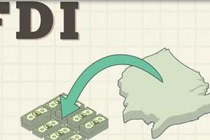 Cách nhìn thiếu khách quan về chuyển giá có thể tạo rào cản đầu tư vào Việt Nam