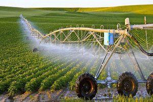 Tiếp cận nông nghiệp 4.0 ở Việt Nam không thể theo kiểu 'dàn hàng ngang'