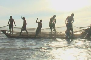 Mùa nước nổi – mùa hưởng lộc trời của người miền TâyKỳ cuối: Ngày cá ra