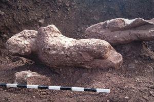 Đào đất trồng trọt, nông dân phát hiện cổ vật quý