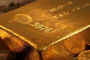 Giá vàng hôm nay 10/11: Vàng giảm sốc, thấp nhất trong 1 tháng