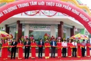 Khai trương Trung tâm giới thiệu nông nghiệp sạch Nam Định