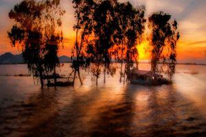 Mực nước sông Cửu Long vẫn ở mức cao