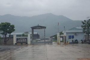 Quảng Bình: Ruồi tấn công, người dân sống dở chết dở