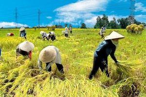 Kết quả ấn tượng sau 5 năm tái cơ cấu nông nghiệp