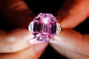 Kim cương Di sản Hồng khổng lồ sắp được đấu giá ở Thụy Sĩ
