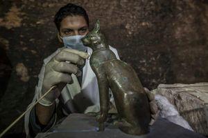 Phát hiện hàng chục xác ướp mèo trong ngôi mộ Ai Cập 6.000 năm tuổi