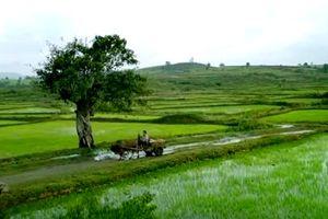 Những cảnh phim đẹp quảng bá du lịch Việt ra thế giới