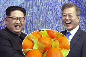Được tặng 2 tấn nấm, Hàn Quốc 'đáp lễ' Triều Tiên bằng 200 tấn quýt