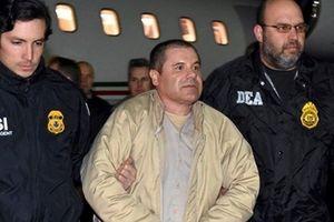 Ngày tàn của trùm ma túy Joaquin 'El Chapo' Guzman