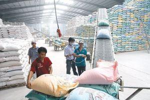 Một tập đoàn Úc mua lại nhà máy chế biến gạo của Việt Nam