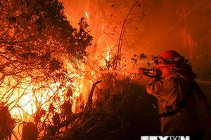 Các đám cháy rừng lan rộng, California chìm trong 'biển lửa'