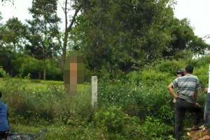 Điều tra vụ người đàn ông chết trong tư thế treo cổ trong vườn keo