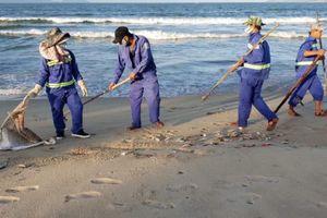 Đà Nẵng: Nghi người dân nổ mìn đánh cá khiến cá chết dọc bờ biển
