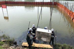 Quảng Ninh: Khử ô nhiễm hồ điều hòa ở Hạ Long bằng công nghệ thiên nhiên Bakture đạt kết quả khả quan