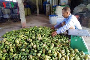 Sản vật tự nhiên rừng U Minh giúp nhiều hộ dân thoát nghèo