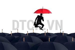 Nhận định thị trường phiên 12/11: Có thể cân nhắc gia tăng tỷ trọng cổ phiếu