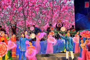 Lễ hội hoa Đào Xứ Lạng sẽ diễn ra trước Tết Nguyên đán