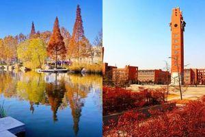 Ngất ngây ngắm trọn những trường Đại học có mùa thu đẹp nhất Trung Quốc