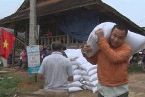 Hỗ trợ gần 700 tấn gạo cho người dân Nghệ An bị lũ lụt