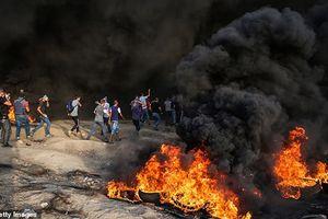 Đụng độ Israel-Palestine bùng phát dữ dội, chỉ huy Hamas bỏ mạng