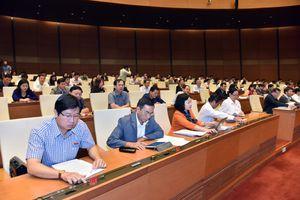 Quốc hội phê chuẩn Hiệp định Đối tác Toàn diện và Tiến bộ xuyên Thái Bình Dương