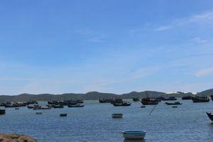 12.000 tàu cá được quản lý thông qua giám sát hành trình