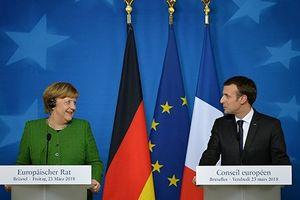 Tổng thống Pháp, Thủ tướng Đức: Bầu cử ở Donbass phá hoại chủ quyền Ukraine