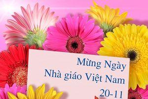 Top những mẫu thiệp đẹp kèm lời chúc ý nghĩa dành tặng thầy cô ngày 20/11