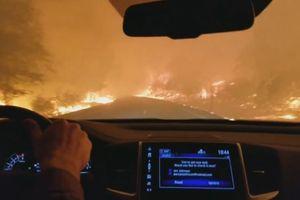 Kinh hoàng cảnh người đàn ông lái xe qua khu rừng đang bốc cháy dữ dội