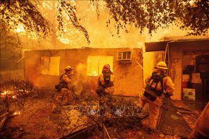Chưa có thông tin người Việt Nam thiệt mạng trong vụ cháy rừng tại Mỹ
