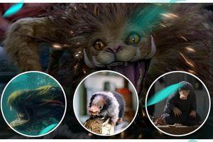 10 sinh vật huyền bí sẽ xuất hiện trong phim 'Fantastic Beasts 2: Tội ác của Grindelwald'