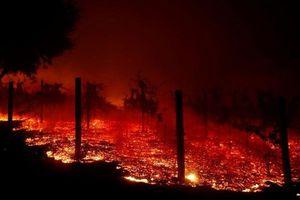 Cận cảnh vụ cháy rừng lịch sử khiến ít nhất 31 người thiệt mạng ở California