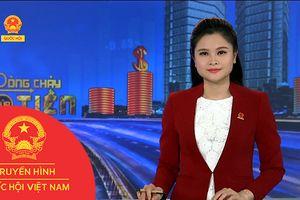 BẢN TIN DÒNG CHẢY CỦA TIỀN TRƯA NGÀY 12/11/2018