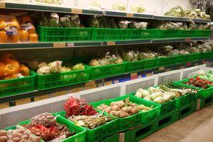Thị trường trong nước 'khát' thực phẩm sạch