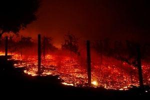 'Biển lửa địa ngục' bao trùm California, Mỹ