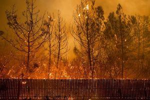 Mỹ: Cháy rừng nghiêm trọng nhất trong lịch sử