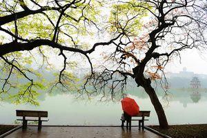 Hà Nội mưa ẩm sáng sớm, trưa chiều hửng nắng