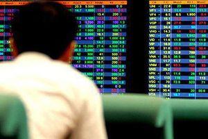 Thao túng giá cổ phiếu của Công ty cổ phần Đầu tư Apax Holdings (IBC), một cá nhân bị phạt gần 700 triệu đồng