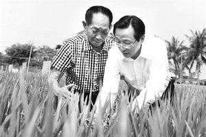 Trung Quốc muốn tăng xuất nông sản sang Nhật- Hàn