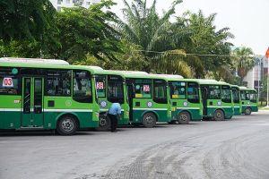 TPHCM đề nghị đánh giá tính hiệu quả của trợ giá xe buýt