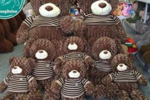 Bí mật đằng sau khuôn mặt dễ mến của những chú Gấu Teddy
