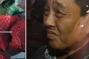 Người phụ nữ gốc Việt nhét kim vào dâu tây có thể bị trả thù