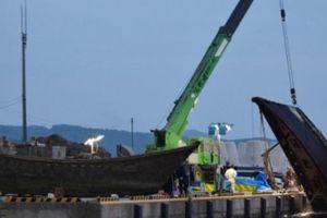 Hàng loạt tàu ma bí ẩn chứa xác người dạt vào Nhật Bản