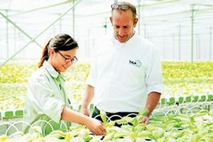 Làm nông nghiệp ứng dụng công nghệ cao
