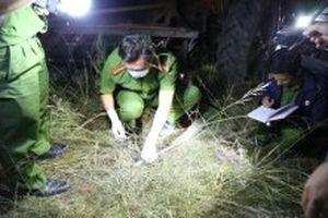 Bắt thêm nghi can trong vụ hỗn chiến giành đất lâm nghiệp ở Đác Lắc