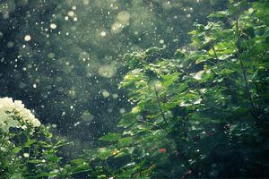 Thời tiết hôm nay 13/11: Hà Nội mưa nhỏ rải rác