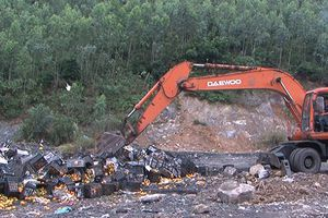 Quảng Ninh: Xử phạt, tiêu hủy gần 10 tấn cam không rõ nguồn gốc
