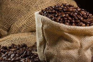 Giá cà phê hôm nay 13/11: Giao dịch trầm lắng