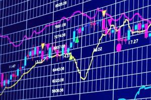 Lãi ròng 9 tháng giảm 14%, MST vẫn 'ôm mộng' tăng vốn lên gần gấp đôi
